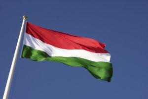 Macaristan'da Soros ve Juncker karşıtı kampanya düzenleyecek