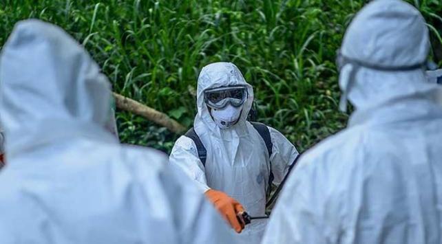 Kongo'da ebola salgını 1 günde 8 can aldı