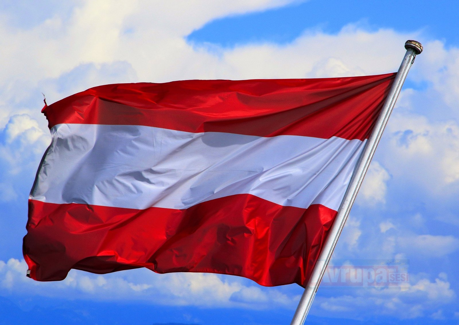 Avusturya'da aşırı sağcı partinin toplantısında
