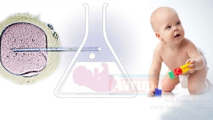 Hollanda'da kısırlık tedavisi yapan doktor 49 çocuğun babası çıktı