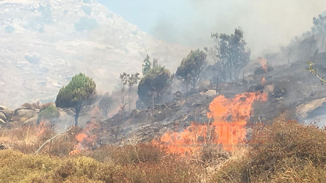 Marmara Adası alevlere teslim, 60 ev tahliye edildi