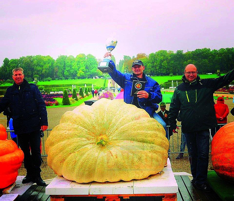 Almanya'nın en ağır balkabağı 687,5 kilo