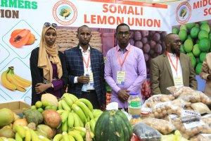 Somali'nin ilk tarım fuarı 'Somturk Agro Expo 2019' açıldı