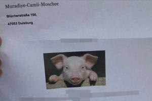 Camiye domuz fotoğraflı hakaret içeren mektup gönderildi