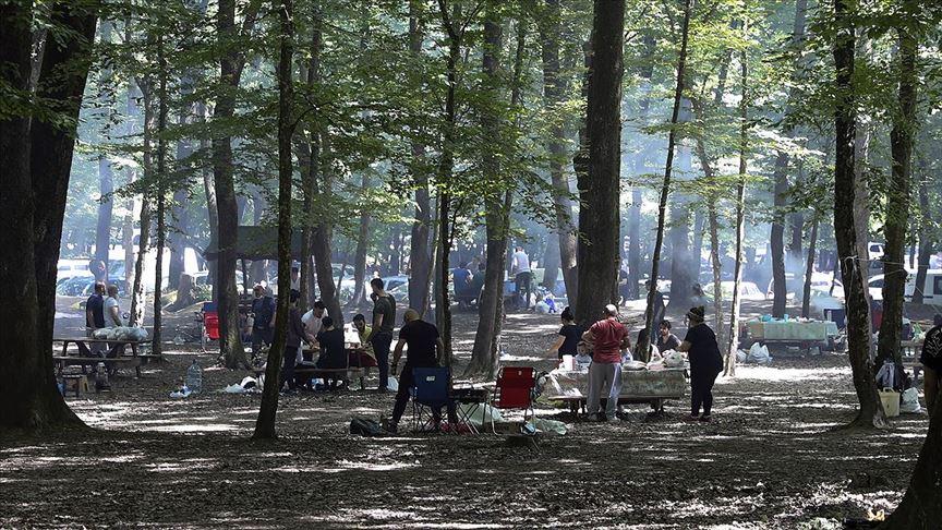 Belgrad Ormanı, vatandaşların ilgi odağı oldu