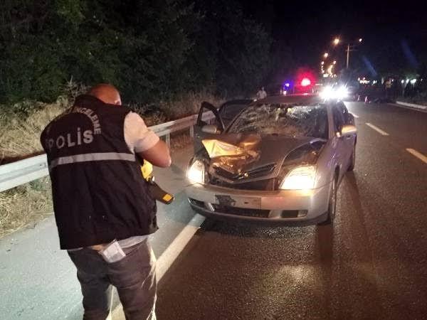 Gurbetçi kadın Türkiye'de kaza yaptı