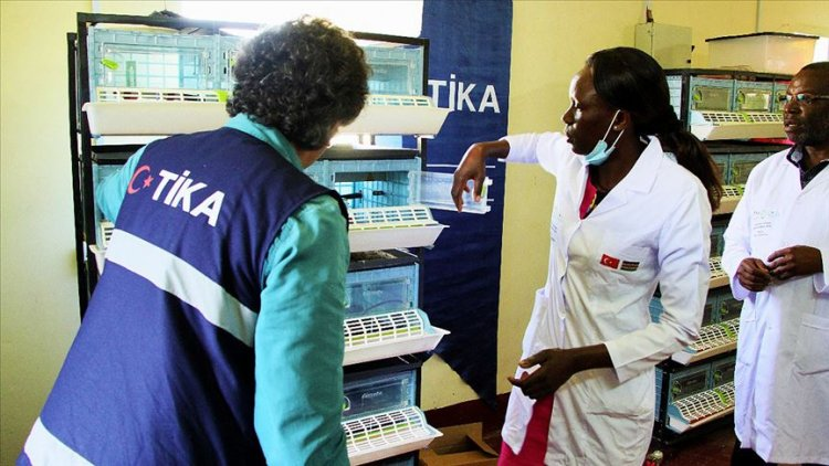 TİKA'dan Kenya'ya modern kuluçka ve yem üretim tesisi kurdu