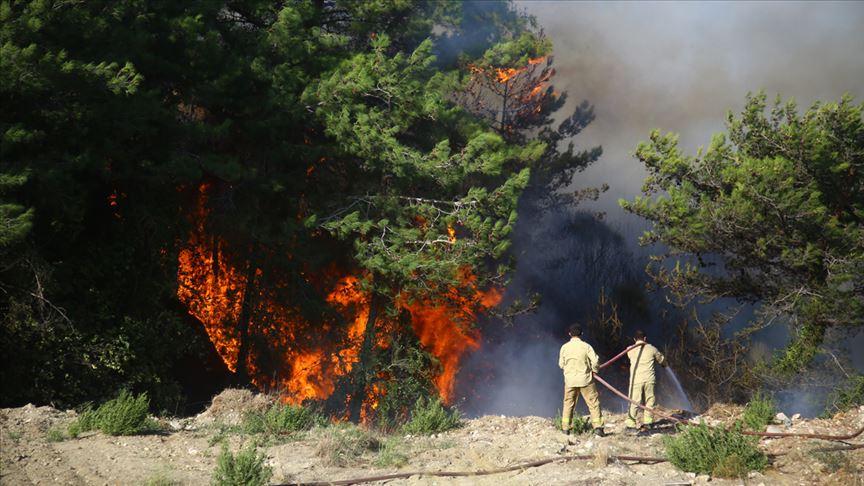 Hatay'daki orman yangınlarıyla ilgili 2 şüpheli