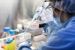 Uzmanlara göre yeni tehlike mutasyon virüsü