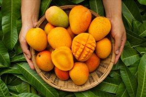 Türkiye'nin tropikal meyve ihracatı artış gösterdi