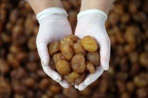Bursa'nın kestane şekeri üreticileri satışlarını e-ticaretle artıracak