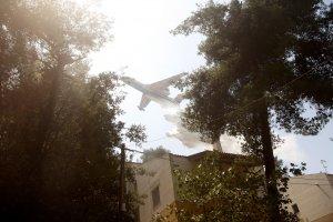 Yunanistan'da başket Atina yakınlarında orman yangını