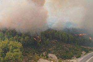 Türkiye'de 6 günde 144 yangın çıktı, 134'ü kontrol altına alındı